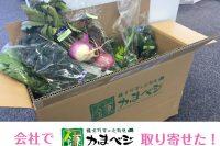 「かまベジ」の野菜!取り寄せました♡
